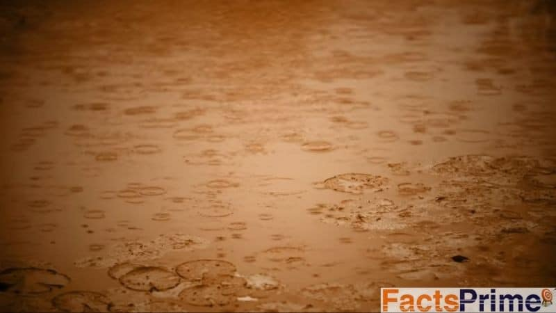 Brown rain _ Facts About 7 Strange Rains Happened Once on Earth _ Mind Blowing